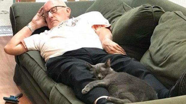 Kattenopa haalt 40.000 dollar op met middagdutjes met asielkatten
