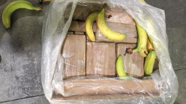 Douane vindt nog eens 97 kilo coke tussen bananen in schip