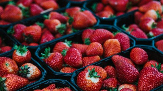 Ook Nieuw-Zeeland slaat alarm om naalden in aardbeien