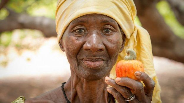 Vruchten plukken van voedselverspilling