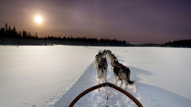 Zweeds Lapland: een sprookjesachtige omgeving in de bittere kou