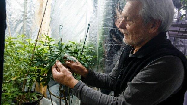 Cruciaal brexitoverleg  | Legale cannabis in Canada