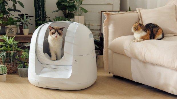 Deze kattenbak is altijd schoon en trackt of je kat gezond is