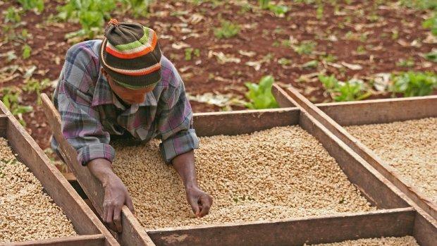 Vandaag live: IDH Congres over duurzame kleding, eten en arme boeren