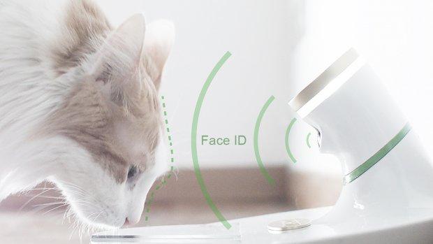 Gezichtsherkenning voor katten en een wc met spraakassistent