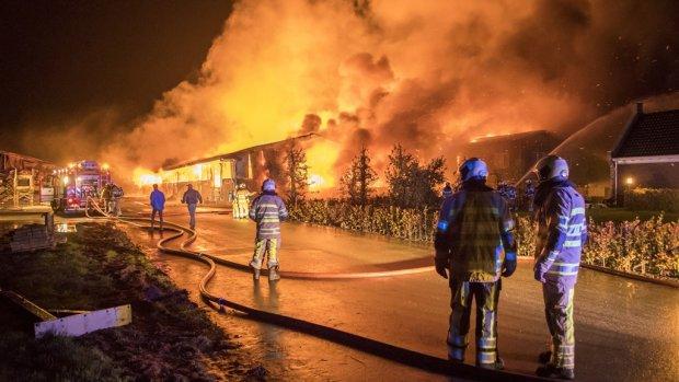 Ruim 100.000 dieren dood bij stalbranden: 'Regels moeten veel strenger'