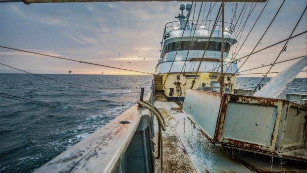 Europese Unie wil Nederland aanpakken om pulsvissen
