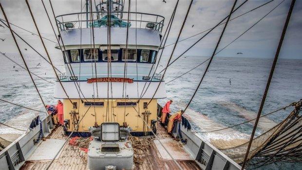 Nederlands verzet haalt weinig uit: pulsvisserij in 2021 verboden