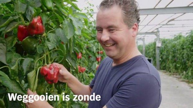 Albert Heijn stopt met misleidende leus 'buitenbeentjes'