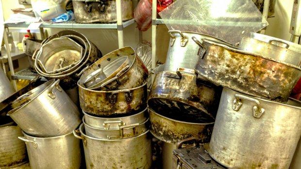Van kakkerlakken in de oven tot beschimmelde spareribs: meer horeca onder verscherpt toezicht