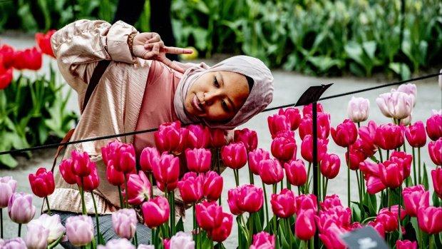 Toeristen betalen zich blauw voor een dagje tulpen