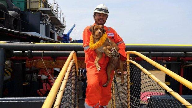Werknemers boorplatform redden hond midden op zee