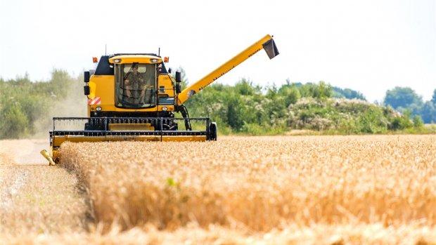 Europese steunmiljoenen komen vaak bij rijke boeren terecht