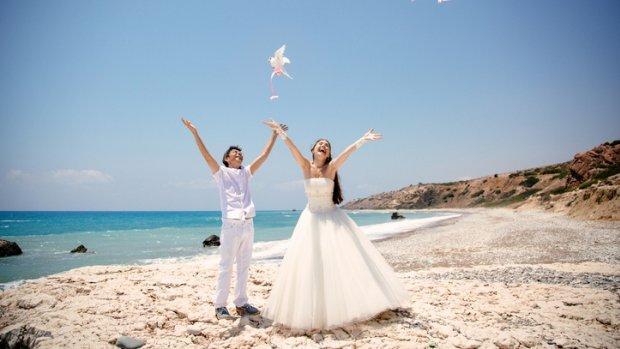 Sierduiven op je bruiloft? 'Ze vliegen hun dood tegemoet'