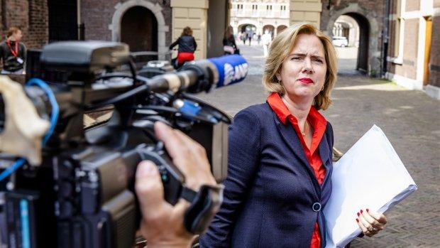 Ministerie trekt stekker uit it-project, geeft Deloitte de schuld