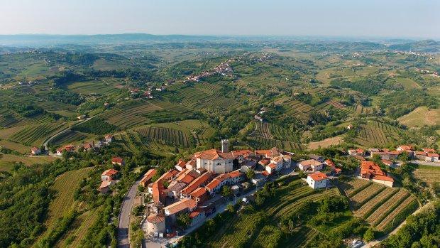 Alleen al voor de wijnen kun je op vakantie naar Slovenië