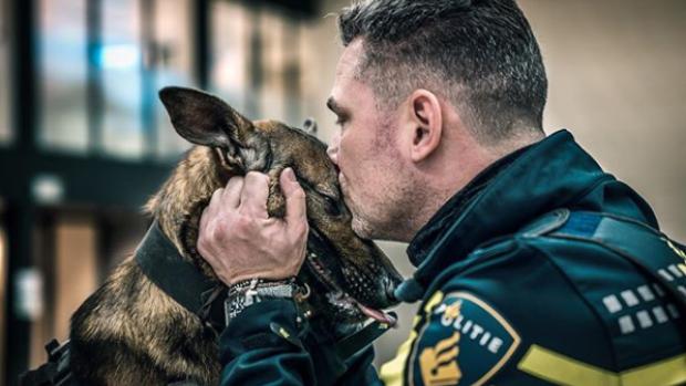 Populaire politiehond Bumper verdwijnt van social media