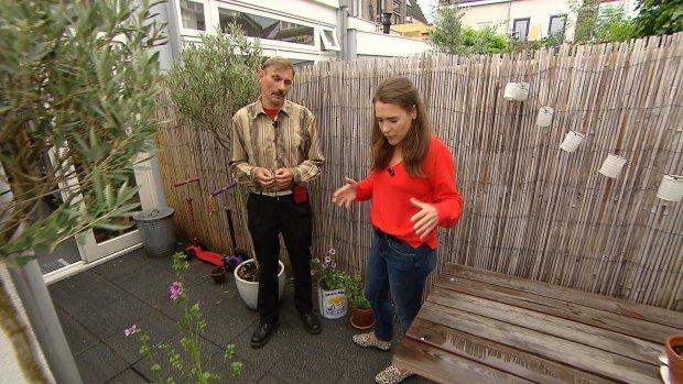 Je woning en tuin klimaatklaar maken: zo doe je dat