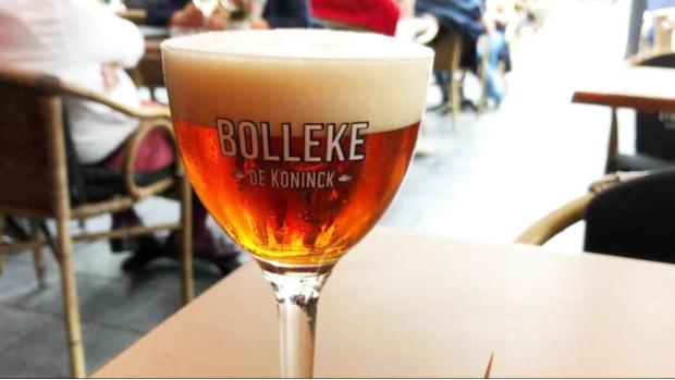 De Koninck wordt Bolleke: 'Heel slim en klinkt gezelliger'