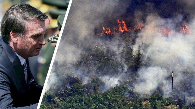 President Brazilië zet toch leger in tegen bosbranden Amazone