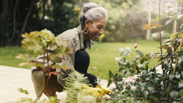 Pensioenkorting: hoe werkt dat en wat gaat er ongeveer af dan?