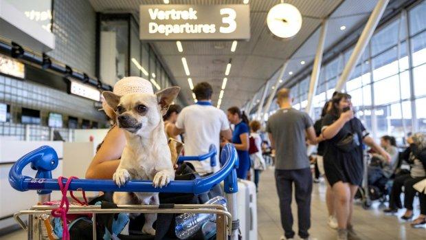 Rechtszaak tegen KLM over compensatie na tankstoring Schiphol