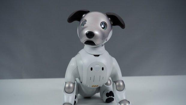 Review: van robothond Sony Aibo ga je een beetje houden
