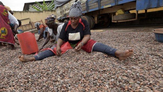 Ultimatum cacaoboeren: betaal meer of verlies duurzaam-keurmerk