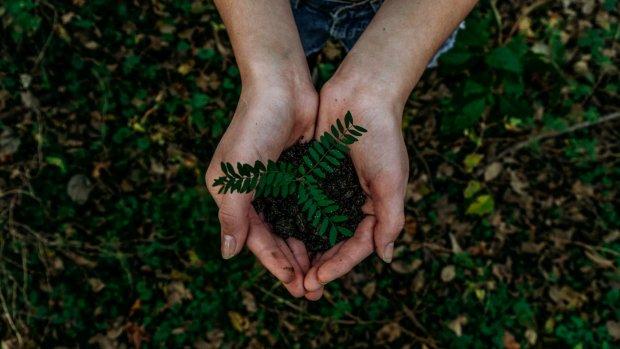 Handig! 5 apps voor een duurzamer leven