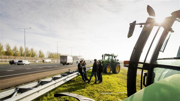 Planbureau: verminderen stikstofneerslag geen 'ultieme oplossing'