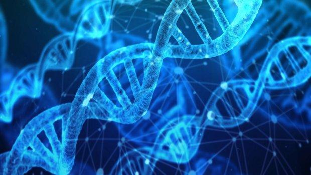 Onderzoek naar zeldzame ziektes versneld dankzij DNA-platform