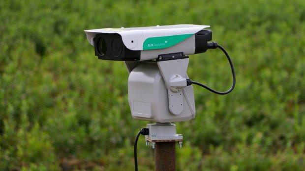Vogels verjagen met laserlicht