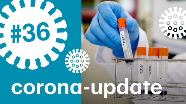 Waarom telt Nederland relatief veel doden door het coronavirus?