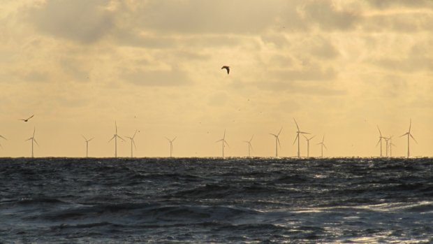14 miljard geïnvesteerd in windmolens  op zee
