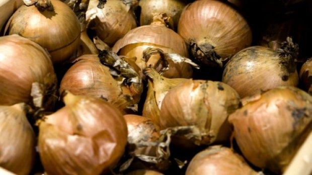 OM: aardappel- en uienhandelaren betrokken bij witwaspraktijken