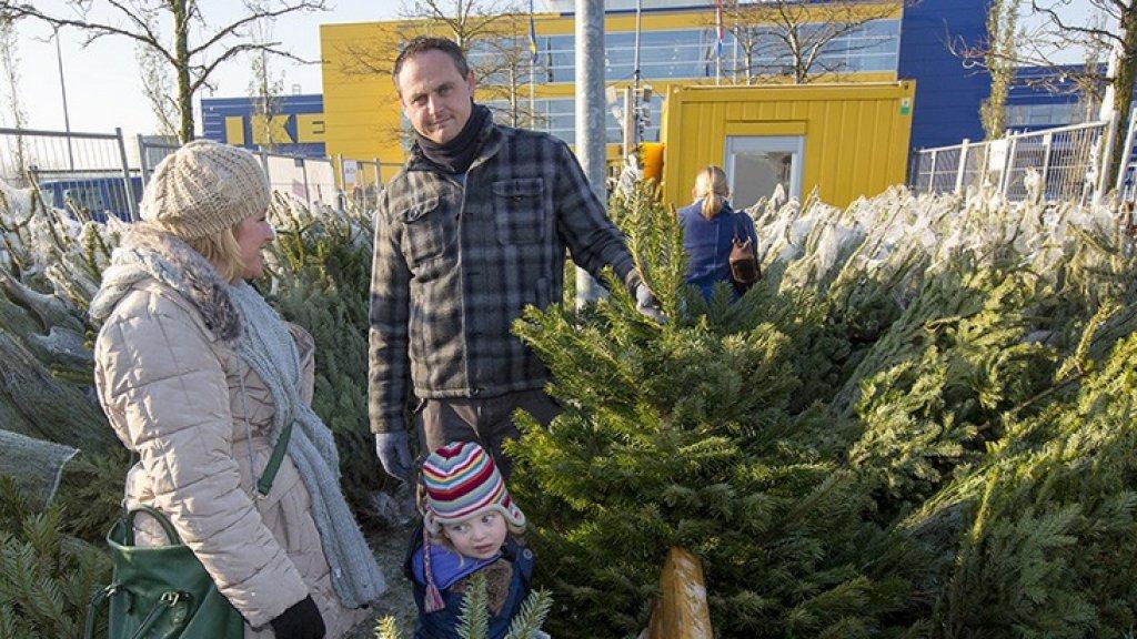 Kerstbomenoorlog Winkelketens Dupeert Straatverkoper Rtl Nieuws