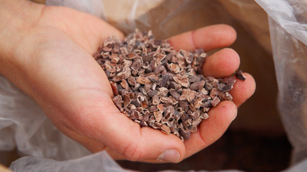 Cacao-nibs (archieffoto)