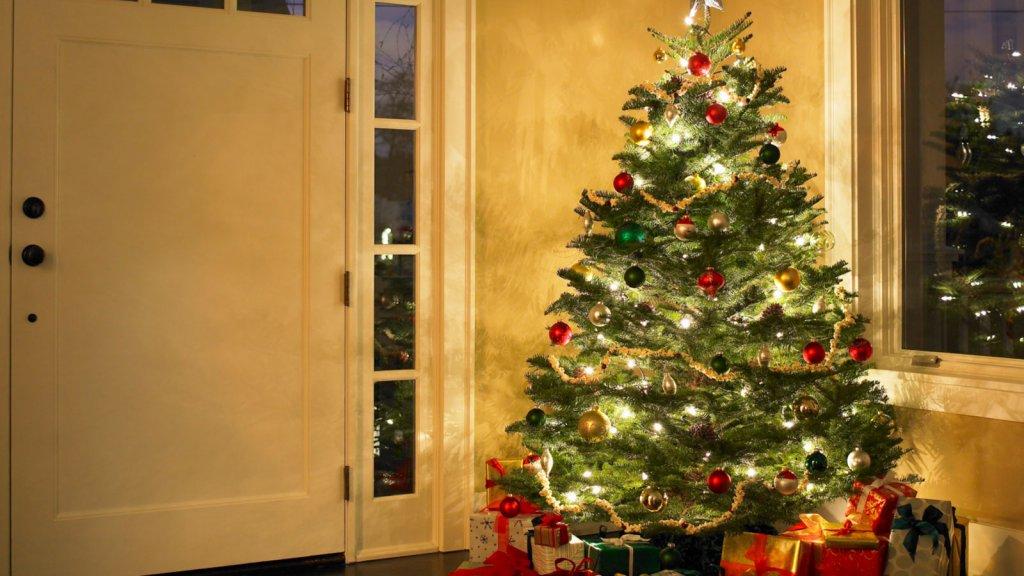 Dief Steelt Kerstboom Compleet Met Ballen En Lichtjes Rtl Nieuws