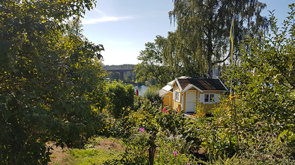 Volkstuintjes in Tantolunden