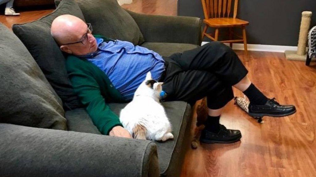 Een van de eerste foto's die het asiel deelde van een slapende Terry.