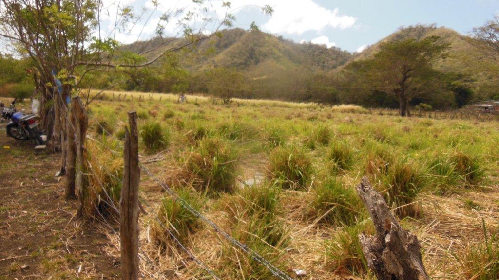 Het stuk land dat Jeremy en zijn vrouw hebben gekocht in Nicaragua.