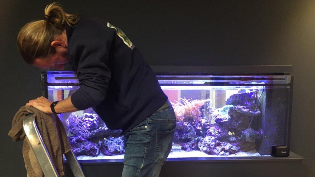 Erik Rood maakt de aquaria bij zijn klanten eens per twee weken schoon