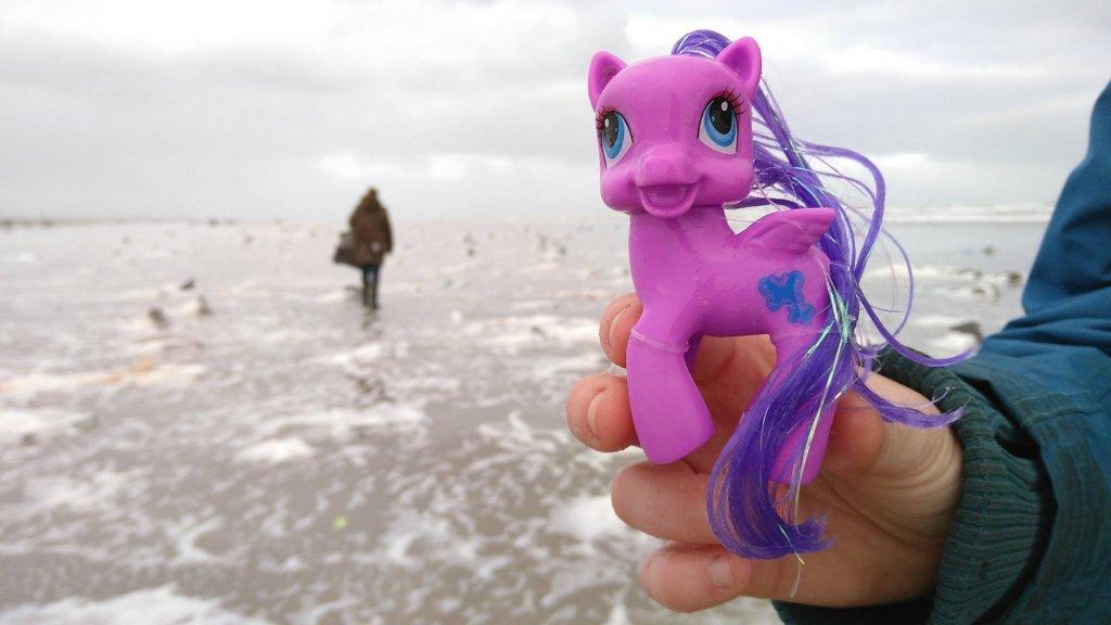 Een My Little Pony op het strand van Terschelling