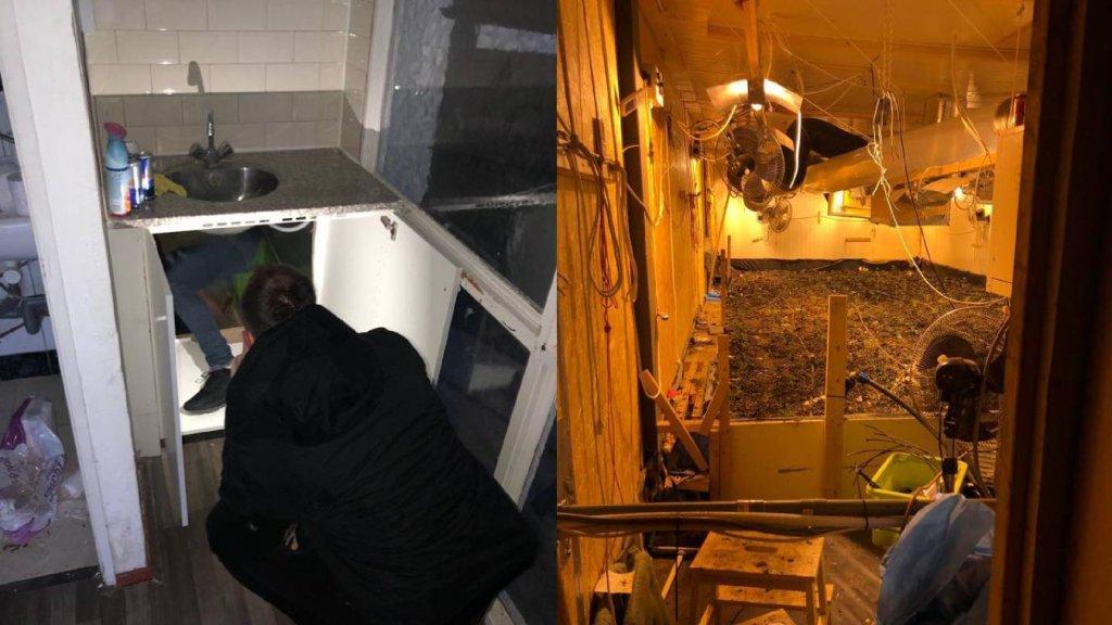 Geheime opening in keukenkastje leidt naar enorme wietplantage