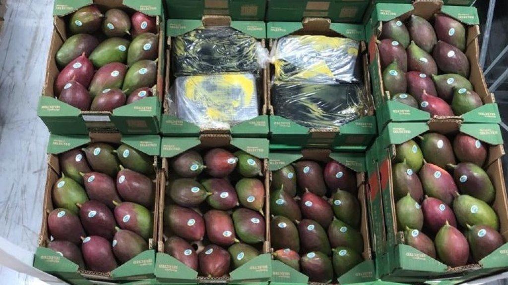 Afgelopen februari werd een grote hoeveelheid coke ontdekt in een container met mango's.