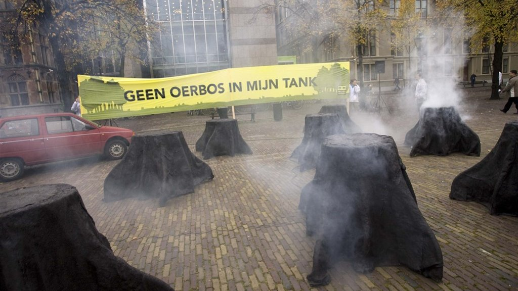 Greenpeace en andere milieuorganisaties verzetten zich al jaren tegen het gebruik van palmolie in brandstoffen.