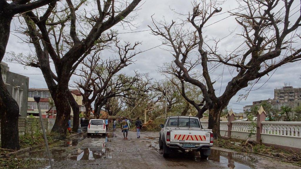 Overal in de stad zijn bomen omgewaaid.