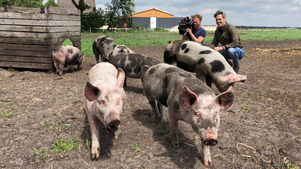 Verslaggever Eise Pulles nam vandaag een kijkje bij varkensboer Mark Blom