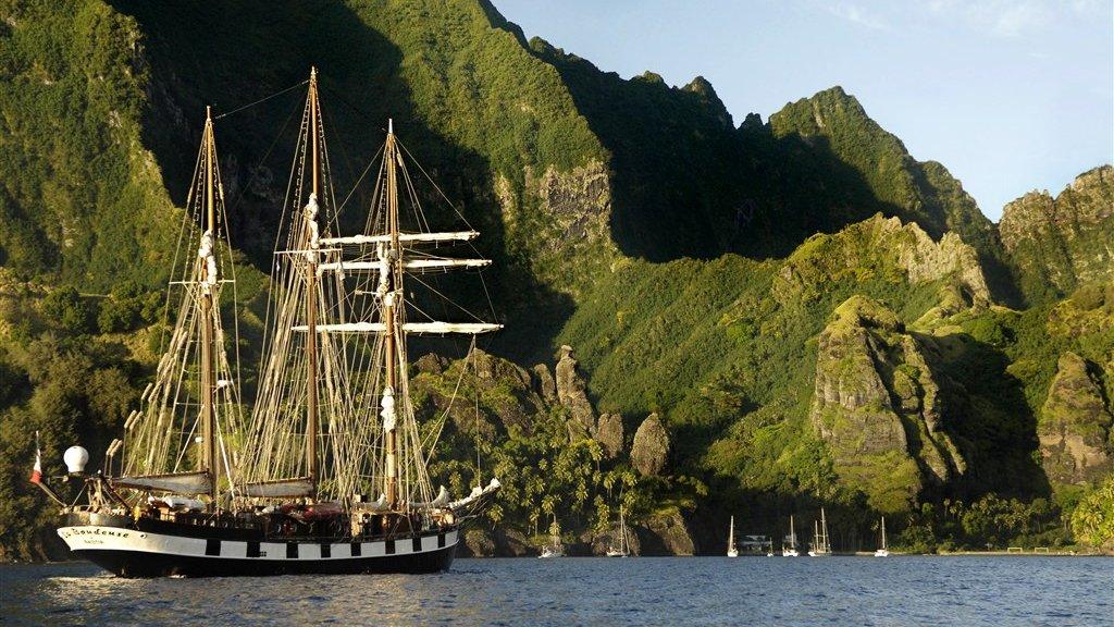 Misschien wel het type schip voor een mooie cruise?