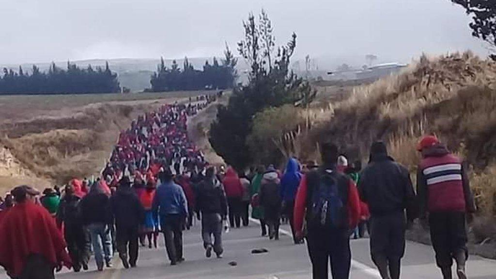 Er zijn al honderden mensen gearresteerd.